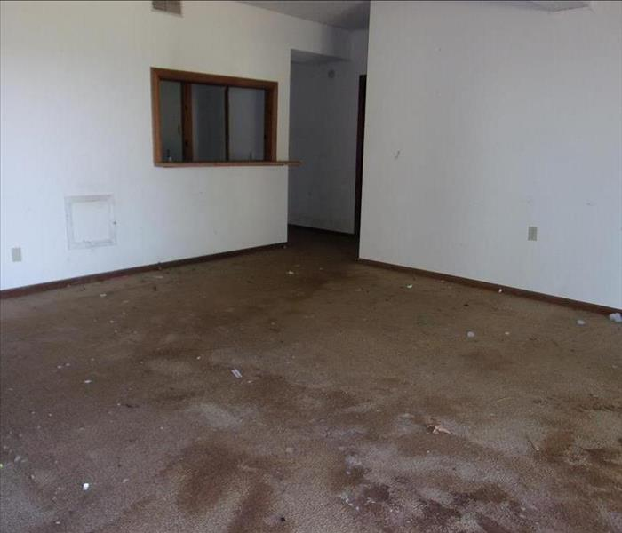 Mold in Vacant Home