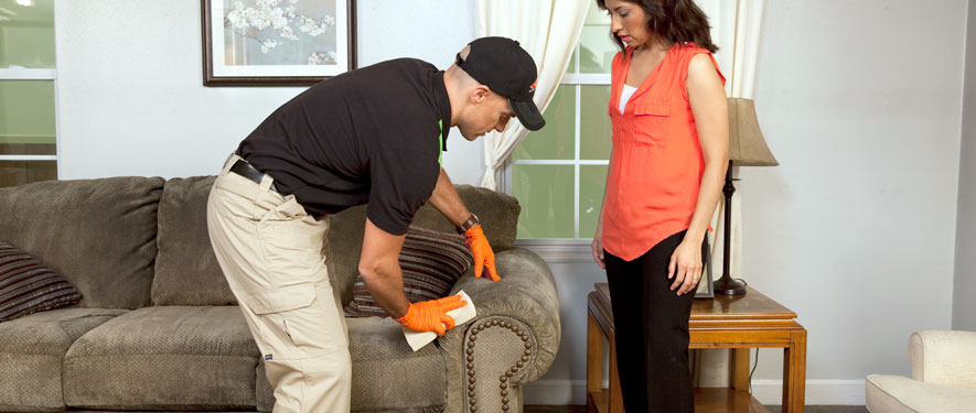 Mountain Home, AR carpet upholstery cleaning